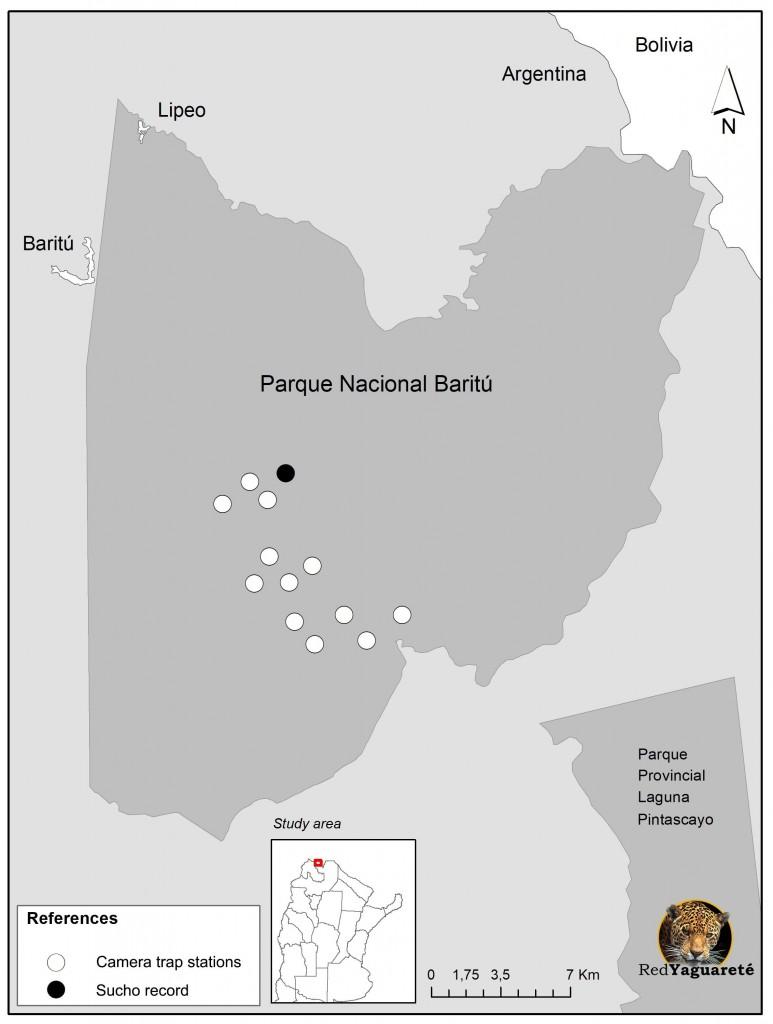 """Fig. 1. Nuestras cámaras trampa en Parque Nacional Baritú y el registro del yaguareté lisiado (""""Sucho"""")"""