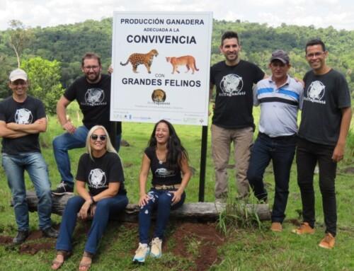Misiones declaró de Interés Provincial el trabajo de la Red Yaguareté.